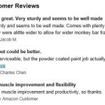 Eastern Jungle Monkey Bars recent reviews